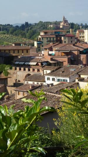 Italy Siena 2016-039